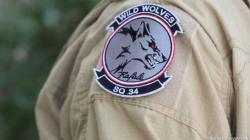 "34th squadron ""Wolves"""